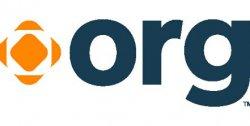 Регистрация доменов ORG – создаём сайт для бизнеса